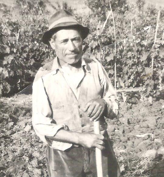 Francesco Fezzigna